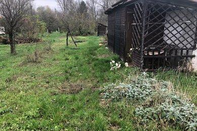 Prodej pozemku - zahrady, 1 033 m² - Rajhrad