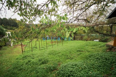 Prodej zahrady, obec Letovice - Jasinov , okres Blansko