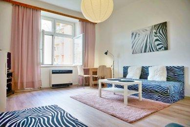 Pronájem bytu 1+1, Brno-Černovice, Klíčova