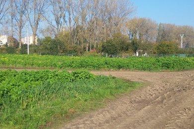 Prodej pozemků v Hulíně, 380 m², Ev.č.: 00717