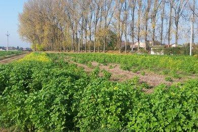 Prodej pozemků v Hulíně, 380 m², Ev.č.: 00791
