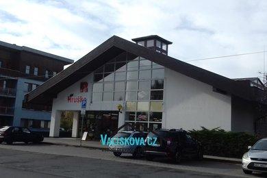 Prodej obchodních prostor 483 m2, Ev.č.: 00857