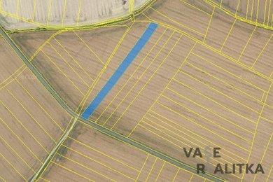 Prodej, pole, Vlkov nad Lesy, Ev.č.: 00446