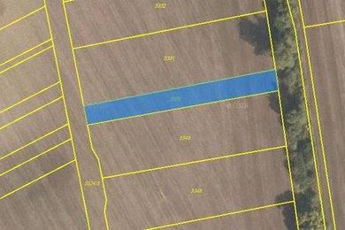 Prodej, pole, Bánov, Ev.č.: 00502