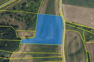 Prodej, pole, Zvíkovec, Ev.č.: 00595