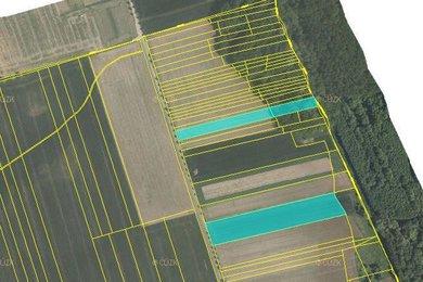 Prodej, pole, Píšť, Ev.č.: 00599