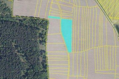 Prodej, pole, Hosty, Ev.č.: 00608