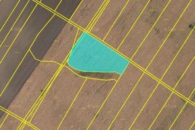 Prodej, pole, Hrušky, Ev.č.: 00610