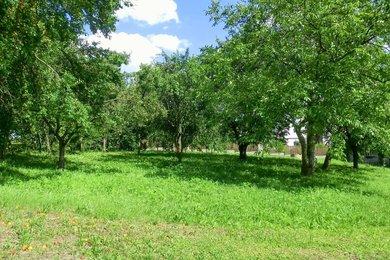 Prodej, pozemek pro bydlení, Bělotín, Ev.č.: 00714