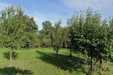 Prodej, zahrada, Černotín, Ev.č.: 00886
