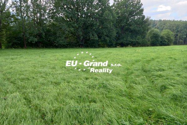 Prodej, Pozemky trvalý travní porost, 11437m² - Cvikov II