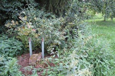 Prodej, Pozemky - zahrady, 4277m² - Rataje - Popovice, Ev.č.: 00415