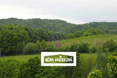 Prodej, Pozemky - trvalý travní porost, 8255m² - Kostelany, Ev.č.: 00494