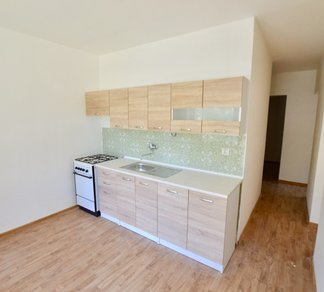 Pronájem slunného bytu 2+1, 60 m2 vč. lodžie a sklepu