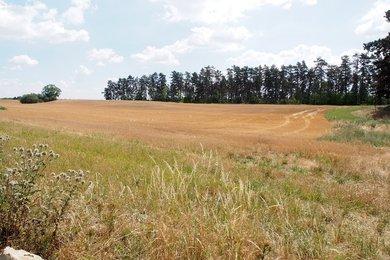 Prodej, Zemědělská půda, 35606m² - Praha - Řeporyje, Ev.č.: 00378