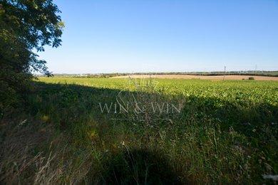 Prodej, Zemědělská půda, 3778m² - Čelákovice, Ev.č.: 00453