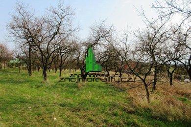 Prodej, Pozemky - zahrady, 6163m² - Dobšice